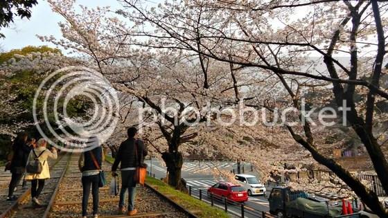photo japan63.jpg