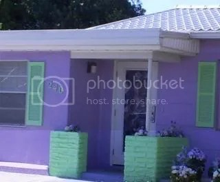 purple and green house