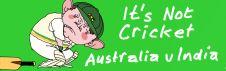2008-01-18-not-cricket-22677big.jpg