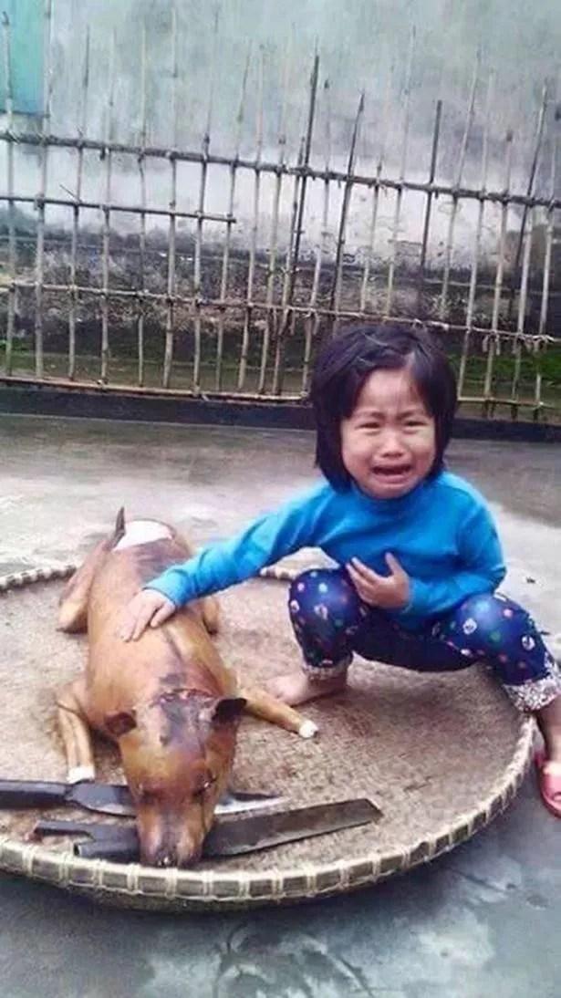 Traumatizados: La pequeña niña llorando al lado de lo que se piensa que es su perro asado