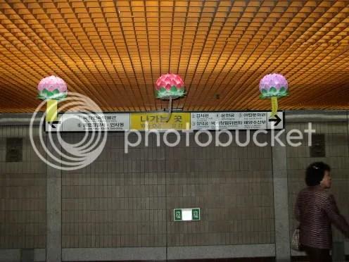 Lotus Lanterns in Anguk Station