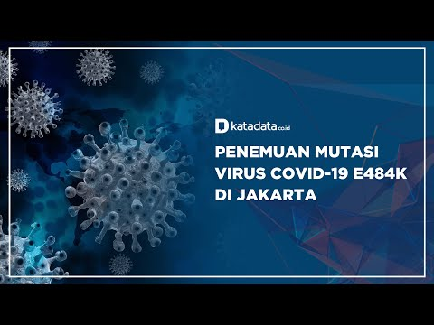 Penemuan Mutasi Virus Covid-19 E484K di Jakarta | Katadata Indonesia
