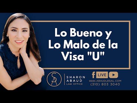 """🔴 Lo Bueno y Lo Malo de la Visa """"U"""""""