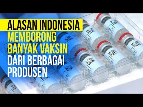 Ini Lho Alasan Indonesia Borong Banyak Vaksin dari Berbagai Produsen