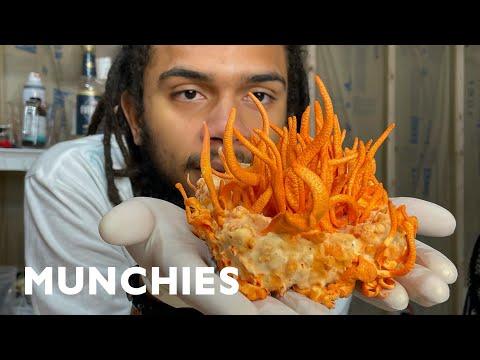 This Scientist Grows Rare Edible Mushrooms