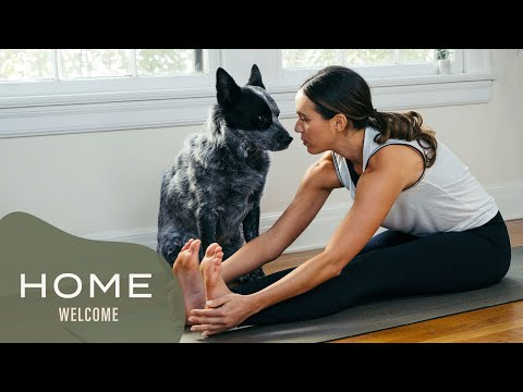 Home - Day 0 - Welcome Home  |  Yoga With Adriene
