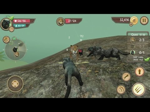 hqdefault Wild Panther Sim 3D Android Gameplay #8 Technology