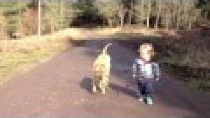 Ein Kind ein Hund und eine Pfütze