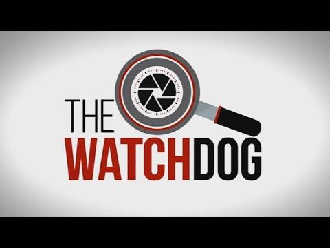 The Watchdog   Voter registration weekend: 17 September 2021