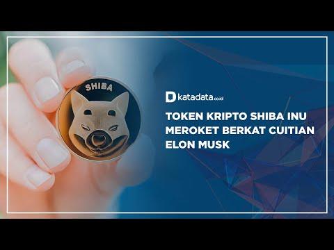 Token Kripto Shiba Inu Meroket Berkat Cuitan Elon Musk   Katadata Indonesia