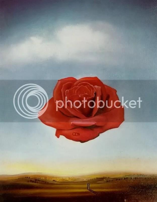 dali_meditative_rose