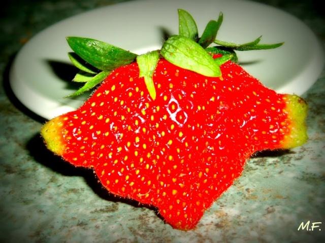 Drôle de fraise