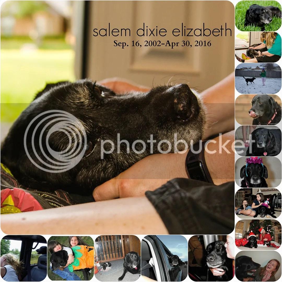 photo Salem.jpg