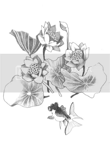 Water Lily Tattoo Design