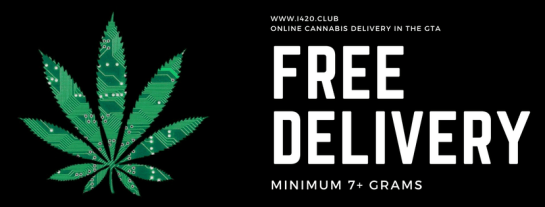 Toronto Cannabis Delivery