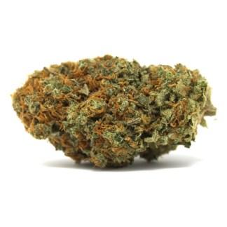 buy-weed-online-canada-White-i420clubWidow-i420club