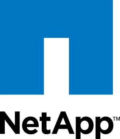 NetApp Simulate ONTAP 8.1 with System Manager v2.0.1