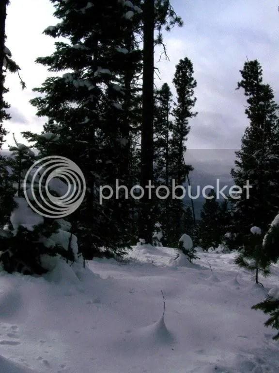 100_0732.jpg picture by irelandsking