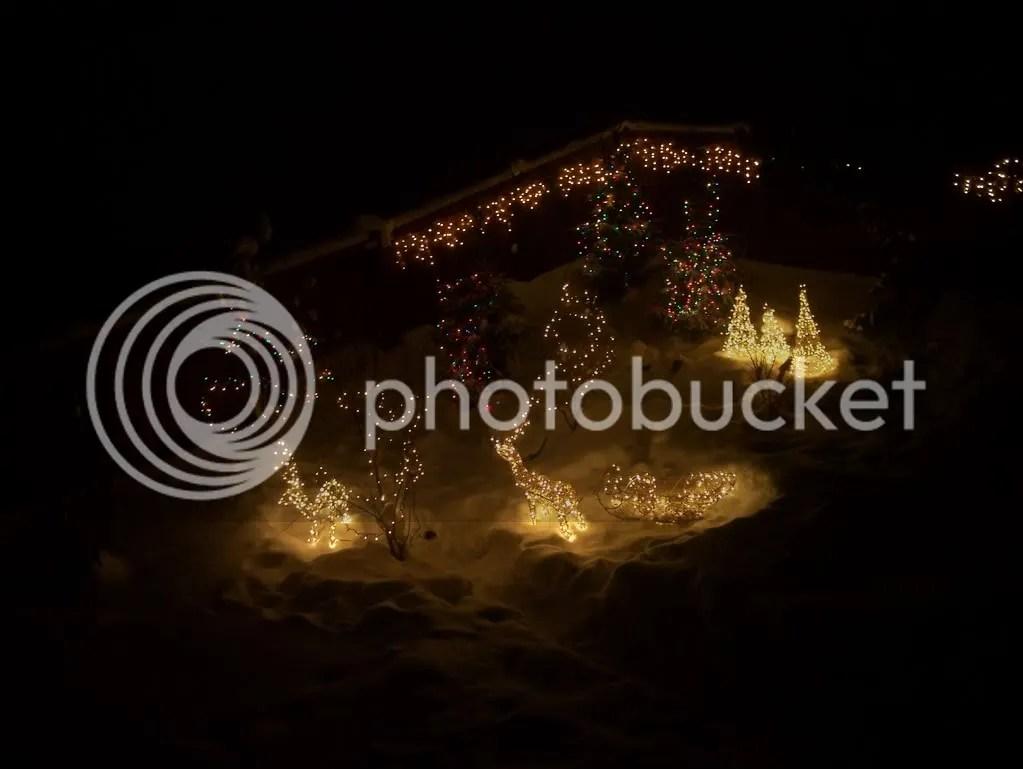 Christmas2008097.jpg picture by irelandsking