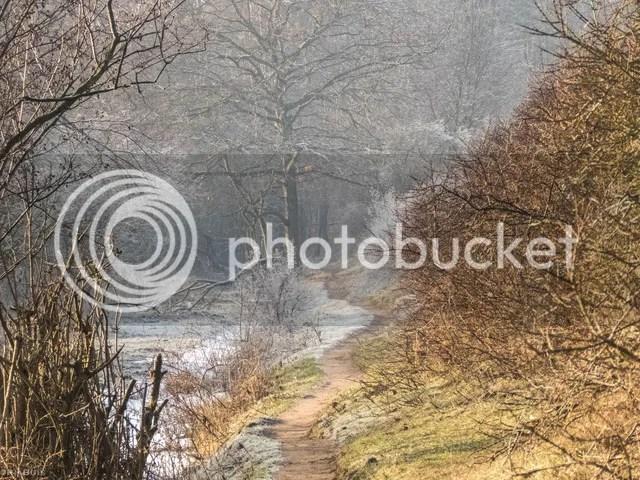 photo IMG_6228_zpshz97tbff.jpg