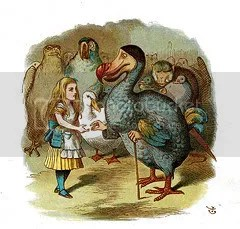 Alice and the Dodo caucusing Pictures, Images and Photos