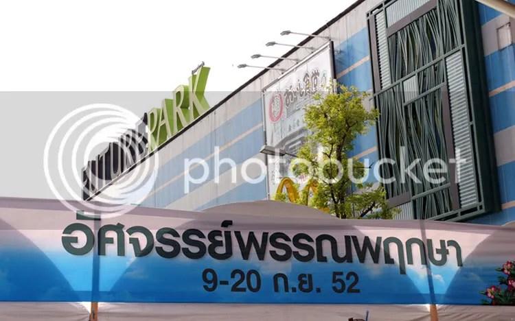 Kontes Adenium di Mall Future Park Rangsit