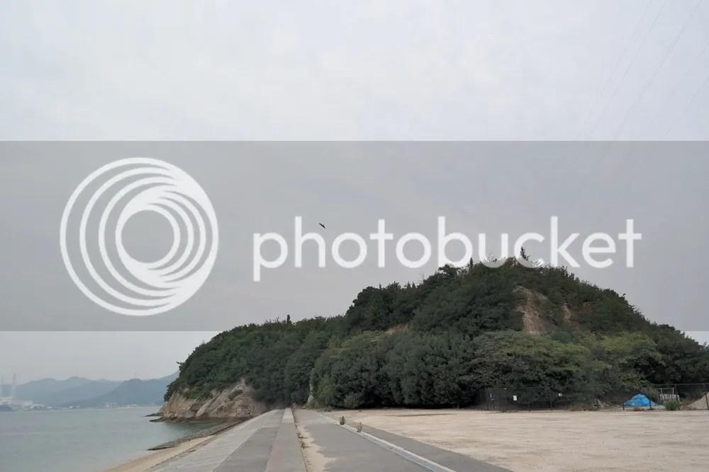 photo 10 40.jpg