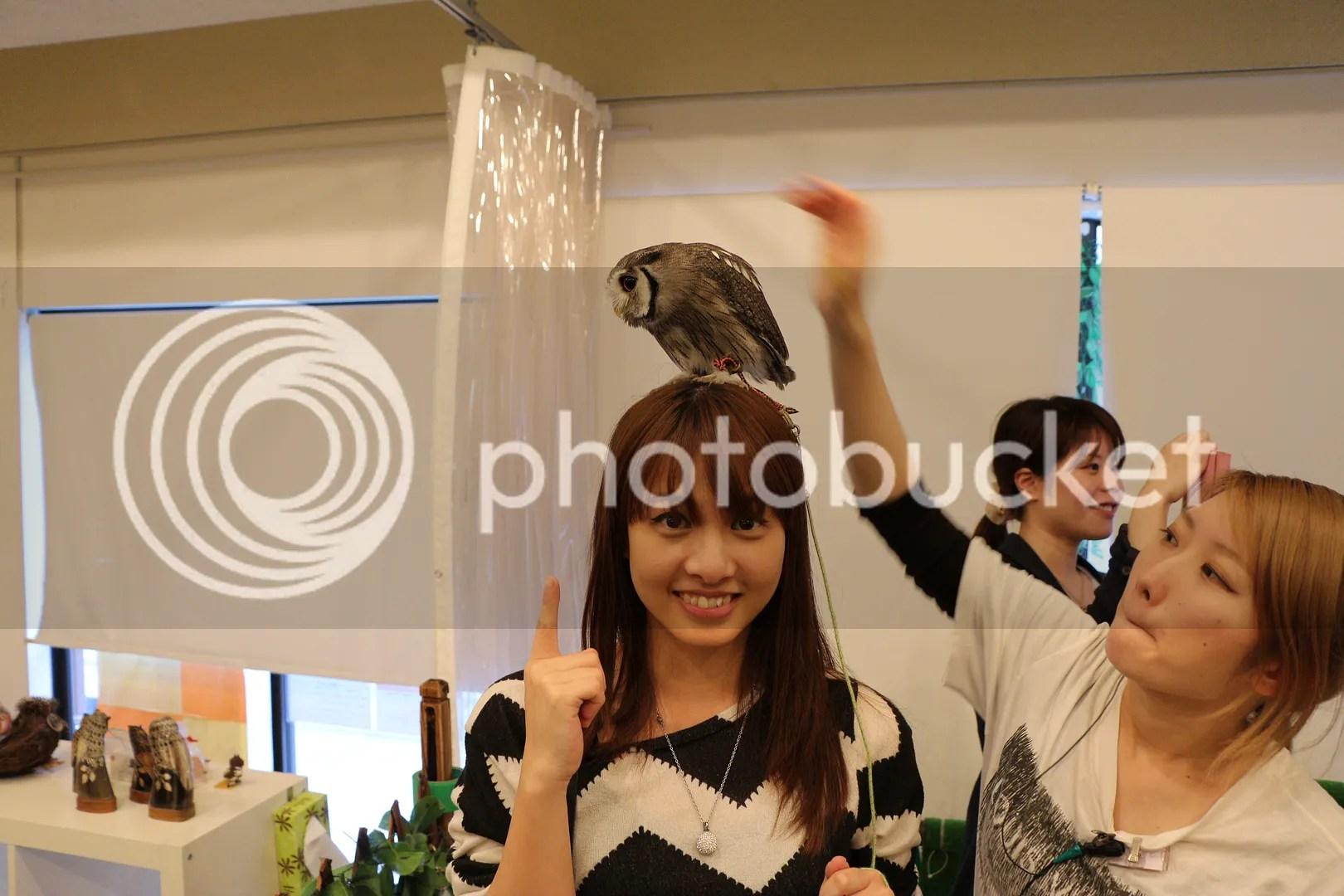 photo TC 16 9.jpg