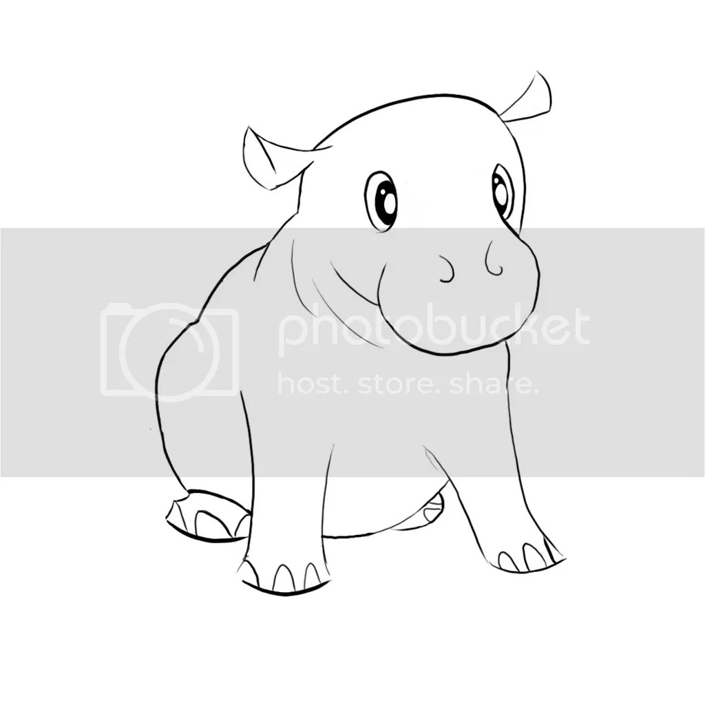 1000 images about hippos on pinterest hippopotamus the hippo