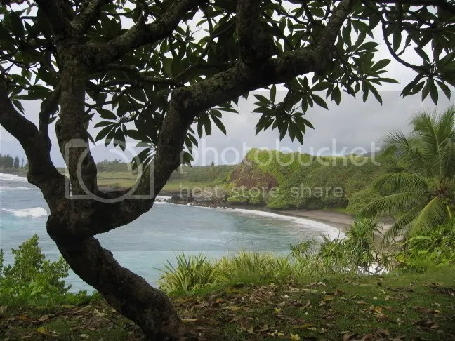 Maui Pictures, Images and Photos