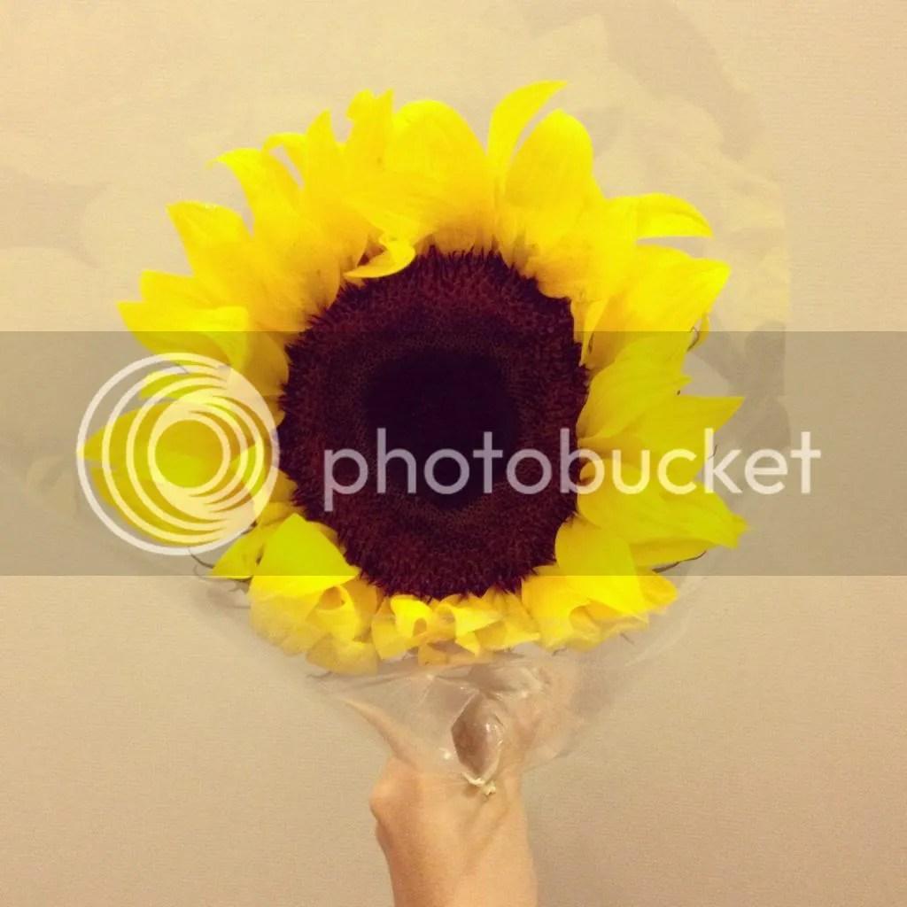 photo Photo18-3-1445608pm_zps22c7af85.jpg