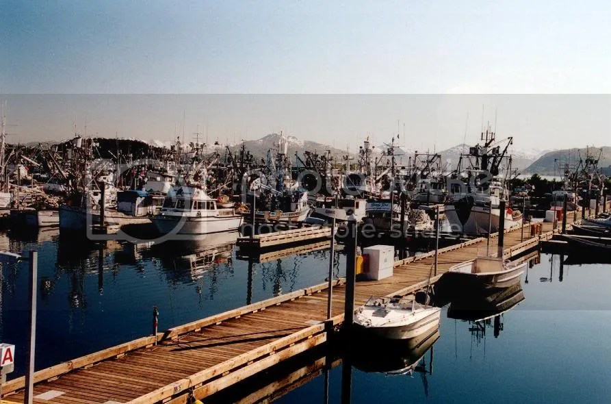 Kodiak Harbor at peace