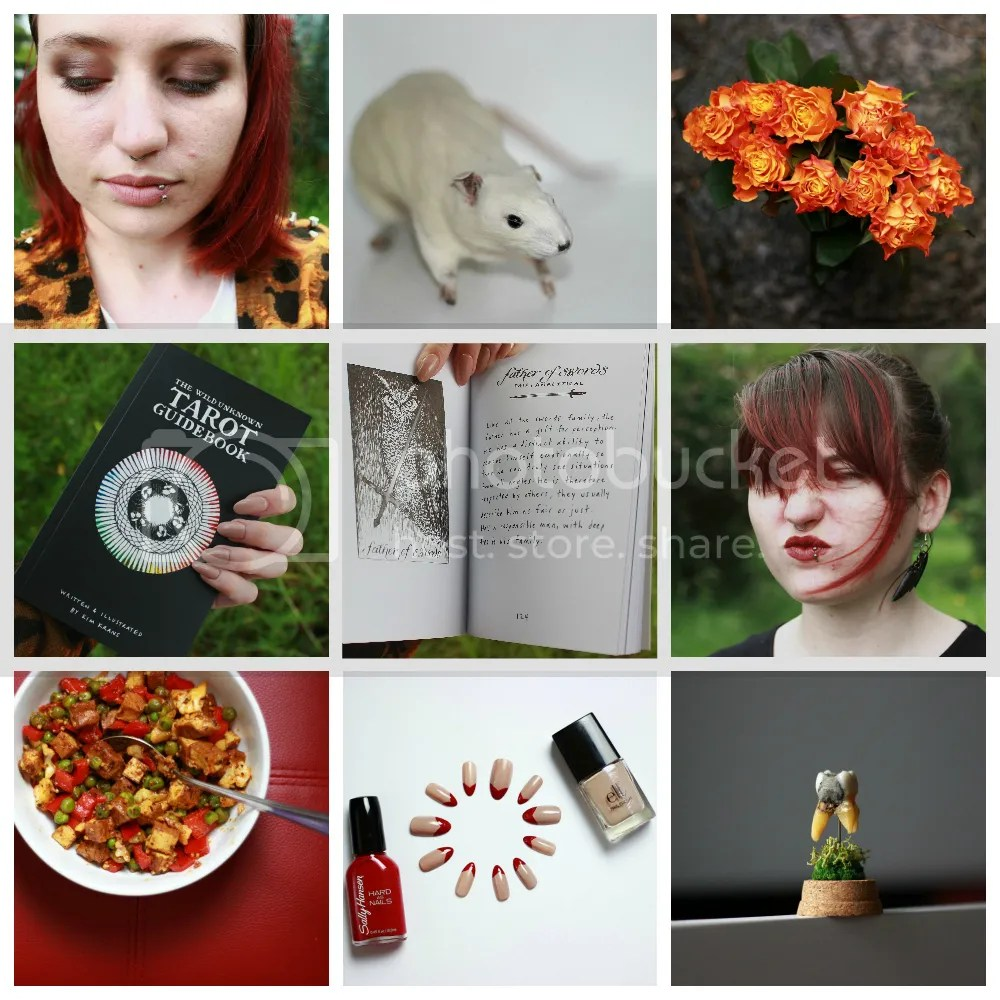 instagram roundup, personal, instagram, taxidermy, oddities, nails, makeup, alternative, goth, new moon, full moon, tofu, red lips,