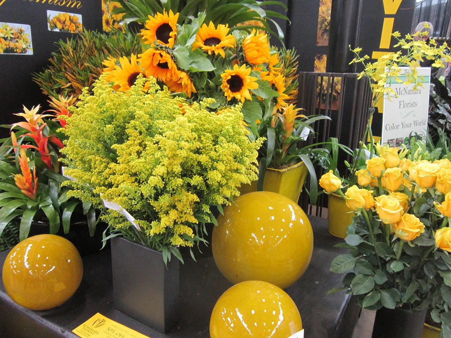 yellow flowers, Indiana Flower and Patio Show, Indianapolis