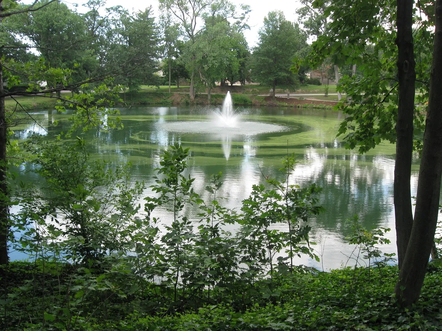 Lake View Cemetery pond, Cleveland