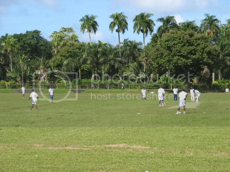 Mid morning cricket game in fiji