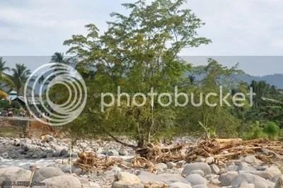Tumpukan Batang-Batang Pohon Setelah Banjir Bandang Yang Menghantam Sungai Limau Manih sebagai Sub-DAS Batang Kuranji