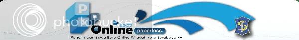 PSB Online 2009 logo