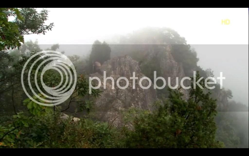 roi1 photo ScreenShot2013-01-26at35840PM_zps11f7538c.png