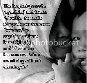 islam, gentleness