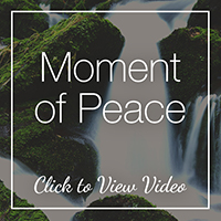 Moment of Peace - View Video