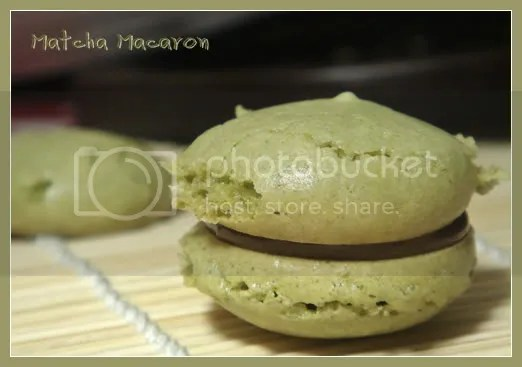 About Macaron