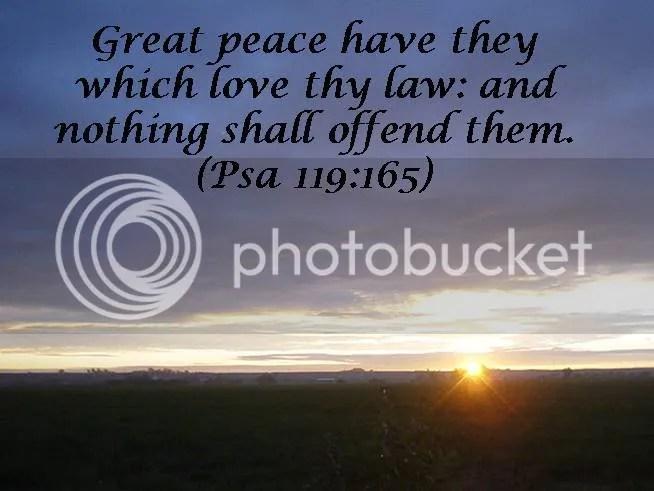 Image result for psalm 119 165 kjv