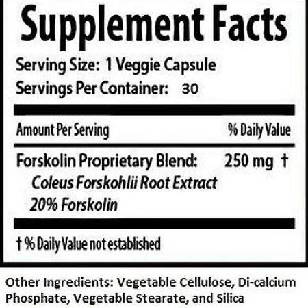 FORSKOLIN EXTRACT Weight Loss 100٪ PURE COLEUS FORSKOLIN 1020 250mg 20٪ 2 Bottles 0483b4b9 3dcc 44e2 bc0c 6516cd0aa115 1