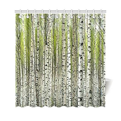 gckg home bath decor fabric green birch tree shower curtain hooks 66x72 inches bare birch trees with fresh green leaves in spring curtains