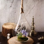 Balsacircle 15 Inch Tall Clear Teardrop Glass Hanging Terrarium Wedding Party Events Centerpieces Decorations Walmart Com Walmart Com