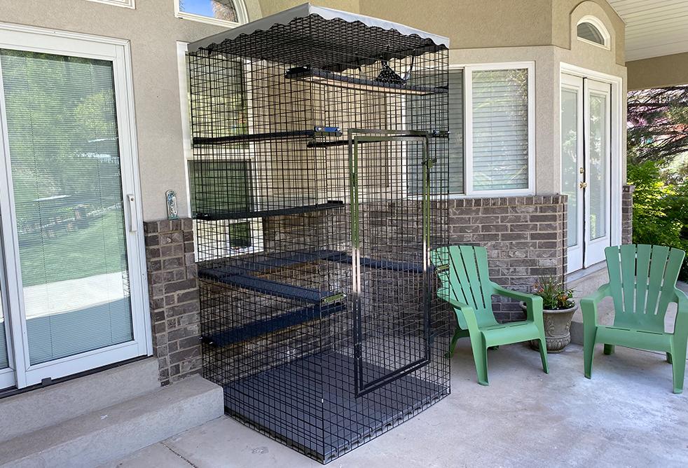 48 x 48 x 96 outdoor catio cat enclosure