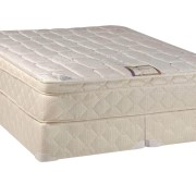 Spinal Solution 9 Pillowtop Fully Assembled Orthopedic Mattress And Split Box Spring Full