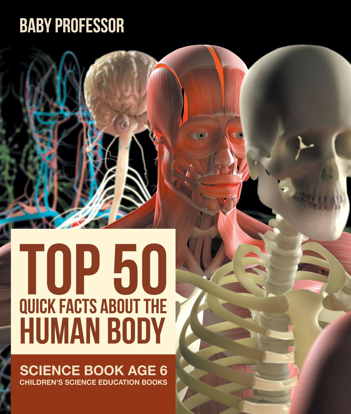 Top 50 Quick Facts About The Human Body