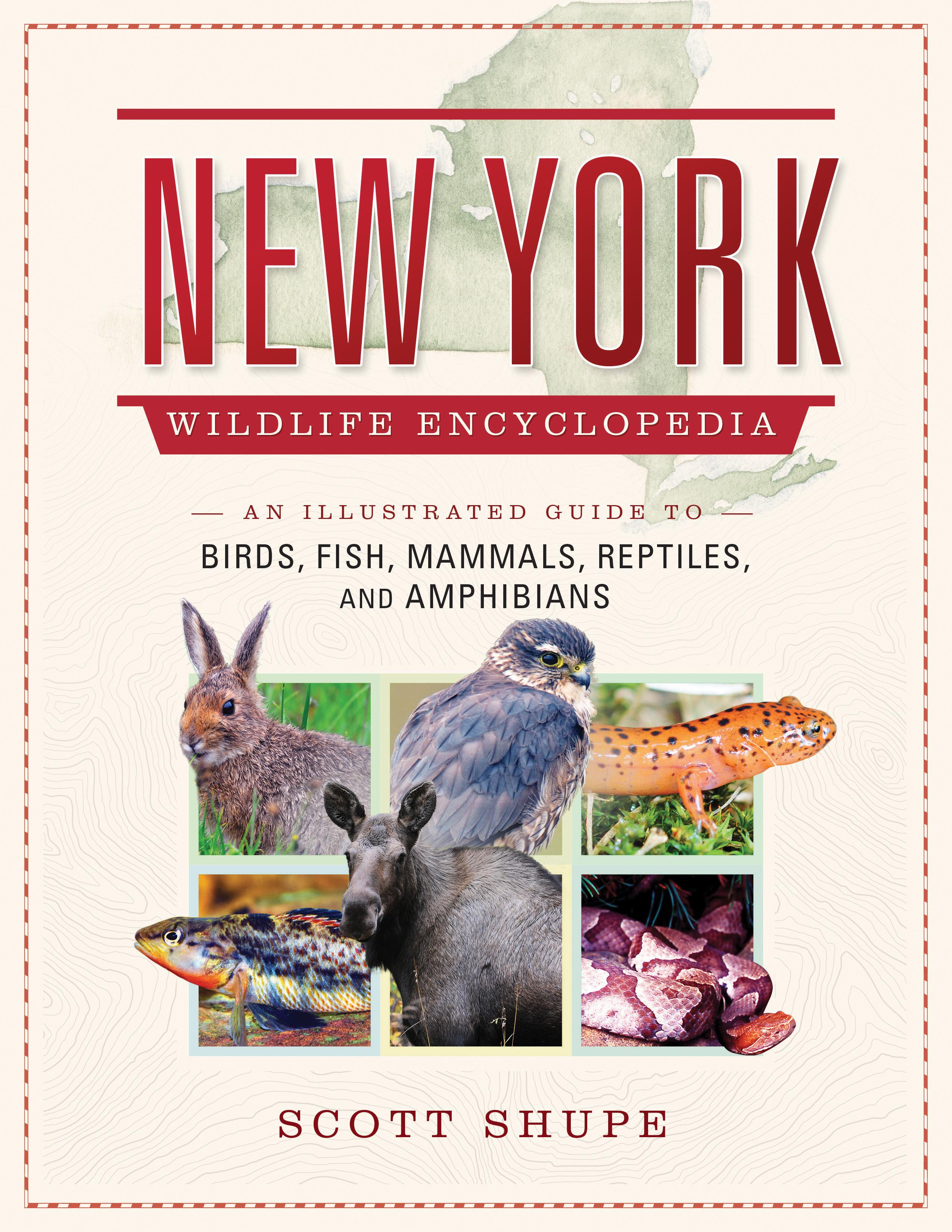 New York Wildlife Encyclopedia An Illustrated Guide To